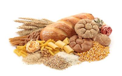 Warum die kohlenhydratfreie Ernährung krank macht!