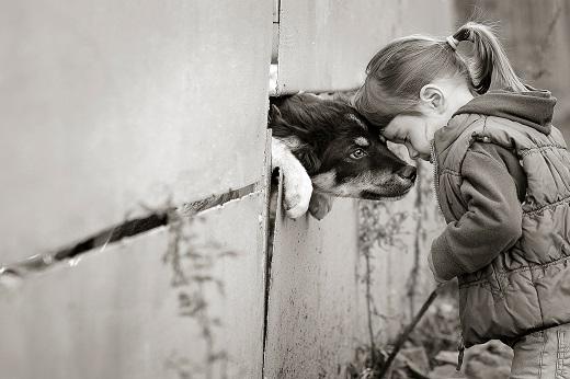 Tierschutz Tierliebe Hun Mädchen